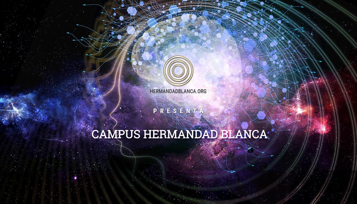 Hermandad-Blanca-Portafolio-1